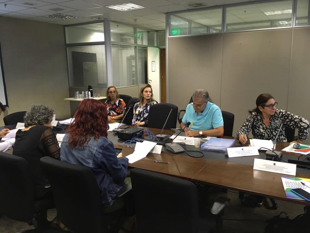 CNDI organiza implementação de ações